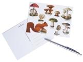 "4 Stk. Postkarten Pilz, Eichhörnchen, Grußkarte, Ansichtskarte, Miniposter, Kunstkarte vintage ""Eichhörnchen"" Din A6 -"