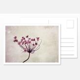 Design Fotokunst Postkarte Silent Moments 2017 -