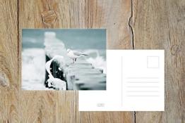 """Fotografie Postkarte """"Eisfüße"""" -"""