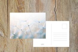 "Fotografie Postkarte ""Pusteblume"" -"